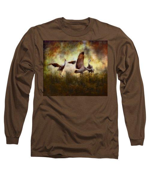Sandhill Cranes  Long Sleeve T-Shirt by Ellen Heaverlo