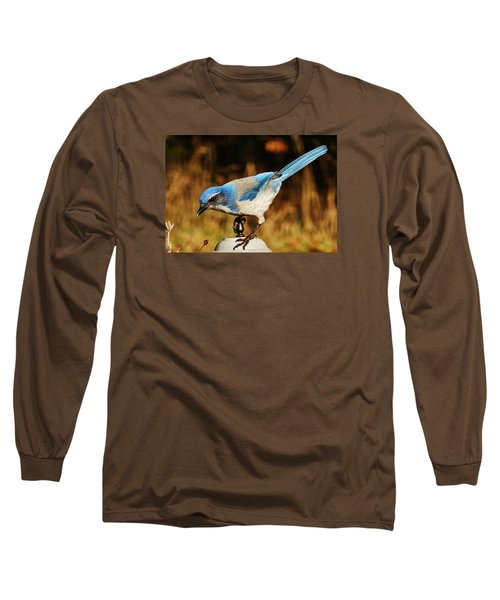 Long Sleeve T-Shirt featuring the photograph Scrub Jay by VLee Watson