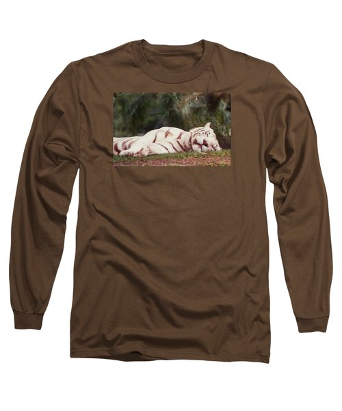 Sleeping White Snow Tiger Long Sleeve T-Shirt