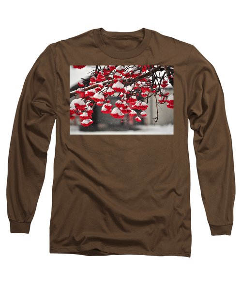 Long Sleeve T-Shirt featuring the photograph Snowy Mountain Ash Berries by Fran Riley