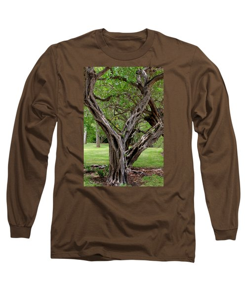 Long Sleeve T-Shirt featuring the photograph Spooky Tree by Rosalie Scanlon