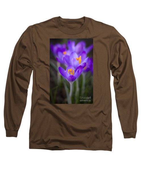 Spring Has Sprung Long Sleeve T-Shirt by Clare Bambers