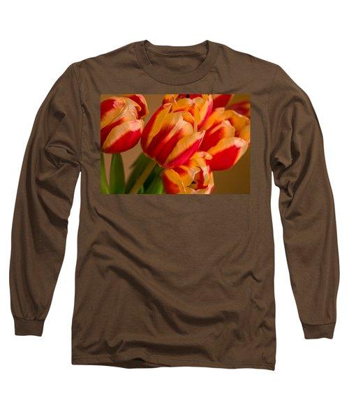 Spring Indoors Long Sleeve T-Shirt