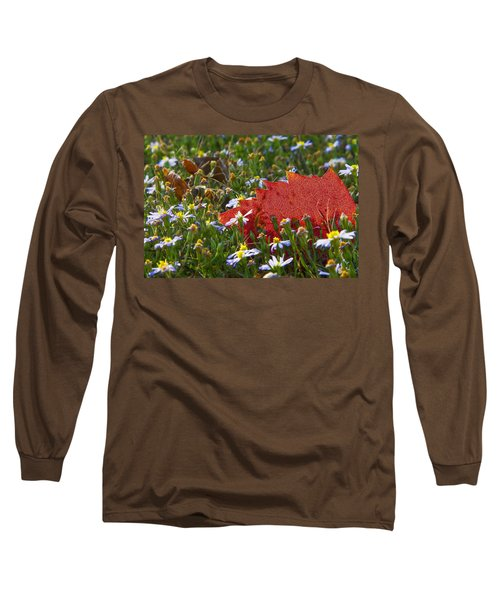 Long Sleeve T-Shirt featuring the photograph Stocking Up For The Winter by Gary Holmes