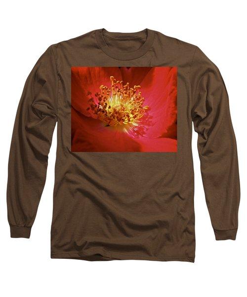 Striking It Rich Long Sleeve T-Shirt