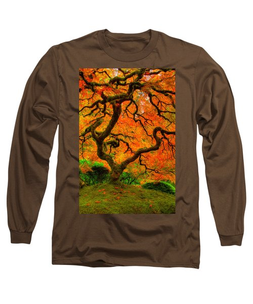 Structured Beauty Long Sleeve T-Shirt