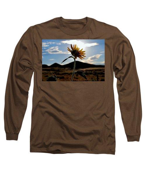 Long Sleeve T-Shirt featuring the photograph Sunflower In The Sun by Matt Harang