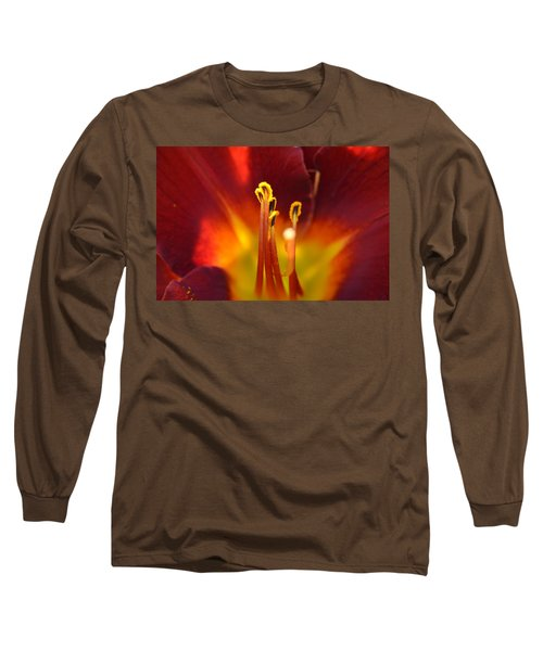 Sunlit Lily Long Sleeve T-Shirt by David Porteus