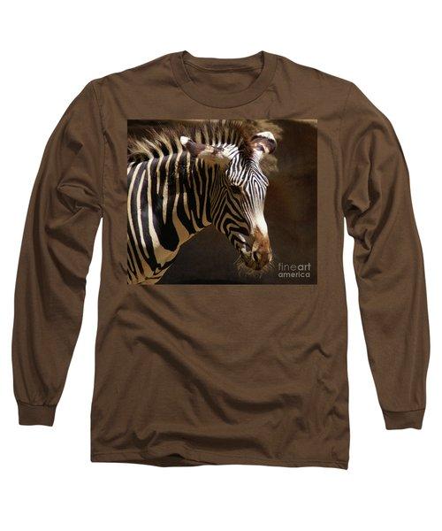 Sunlit Stripes Long Sleeve T-Shirt by Linda Shafer