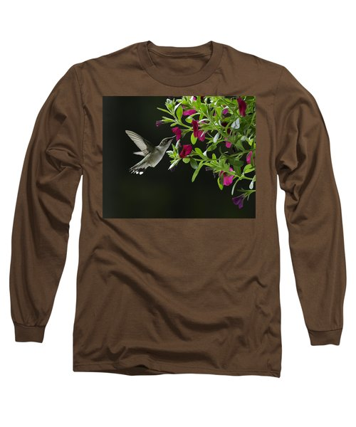 Sweet Nectar Long Sleeve T-Shirt