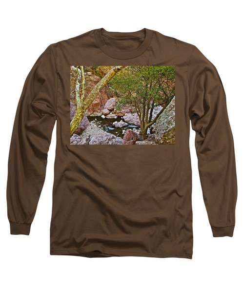 Sycamore And Cottonwood In Whitewater Catwalk National Recreation Trail Near Glenwood-new Mexico  Long Sleeve T-Shirt by Ruth Hager