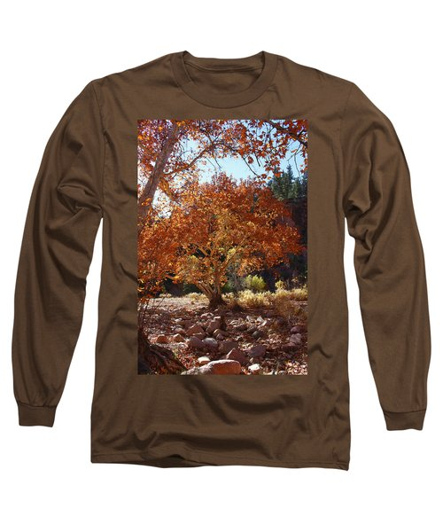 Sycamore Trees Fall Colors Long Sleeve T-Shirt