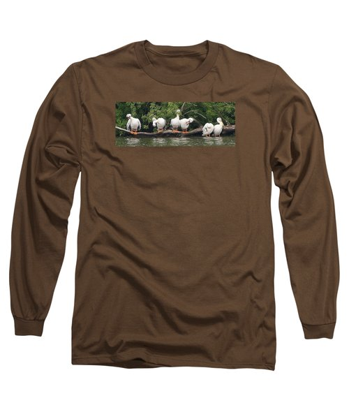 Taking Care Of Things Long Sleeve T-Shirt by Bruce Bley