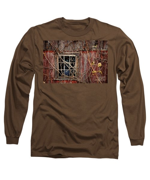 Tangled Up In Time Long Sleeve T-Shirt by Lois Bryan