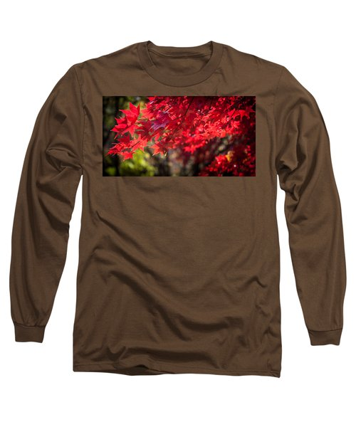 Long Sleeve T-Shirt featuring the photograph The Color Of Fall by Patrice Zinck