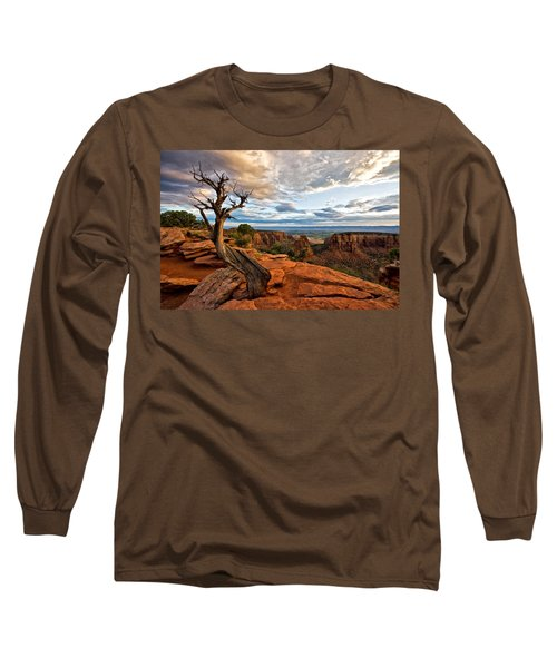 The Crooked Old Tree Long Sleeve T-Shirt by Ronda Kimbrow