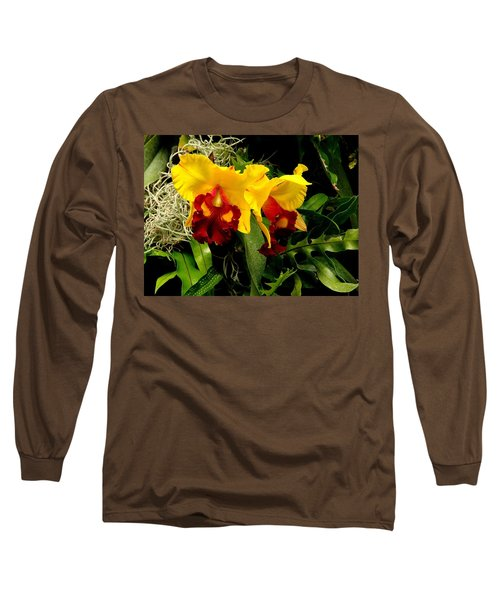 The Elders Long Sleeve T-Shirt