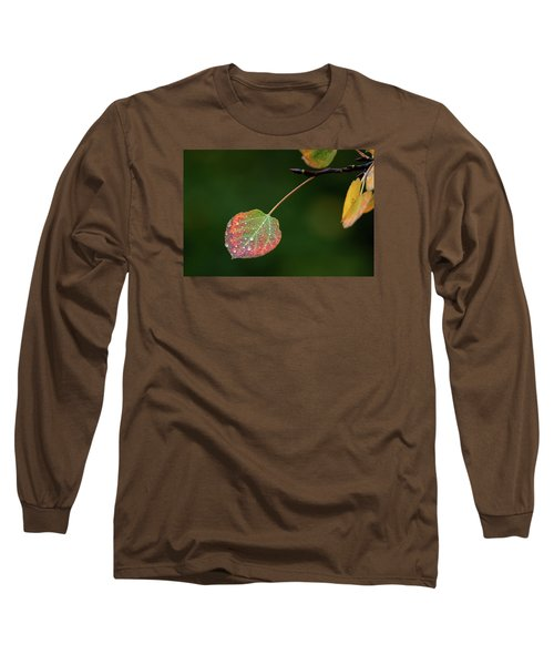The Latter Rain  Long Sleeve T-Shirt by Jim Garrison
