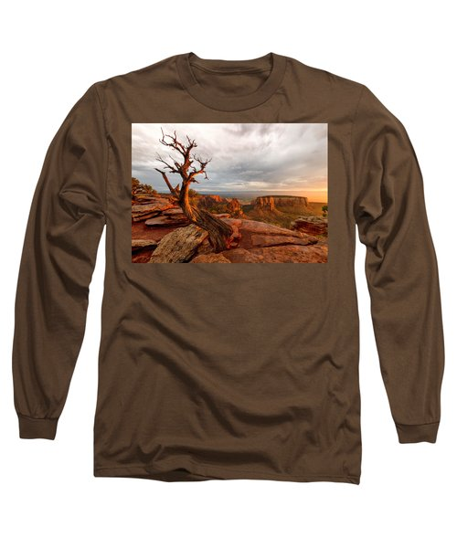The Light On The Crooked Old Tree Long Sleeve T-Shirt by Ronda Kimbrow