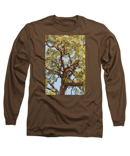 The Old Tree Long Sleeve T-Shirt by Connie Fox