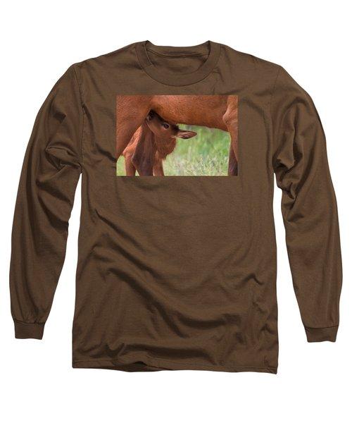 The Right Stuff Long Sleeve T-Shirt by Jim Garrison