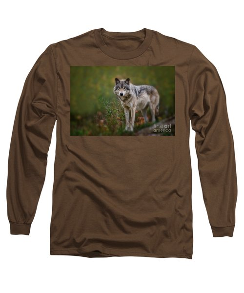 Timber Wolf Pictures 401 Long Sleeve T-Shirt