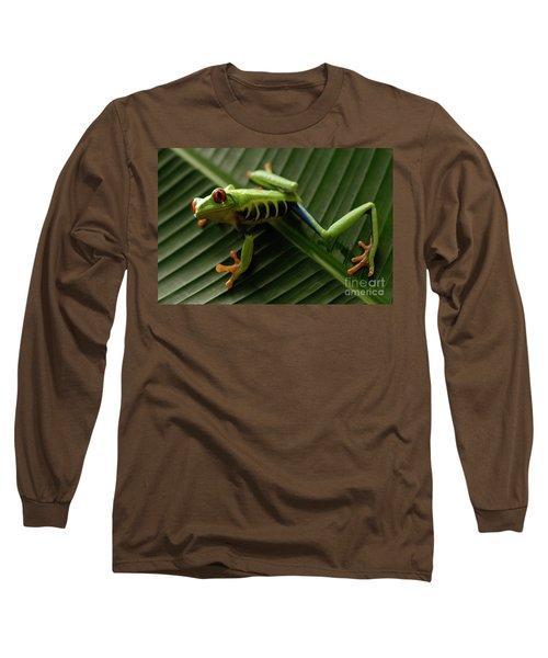 Tree Frog 16 Long Sleeve T-Shirt