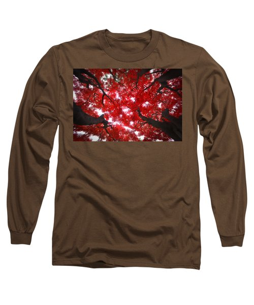 Long Sleeve T-Shirt featuring the photograph Tree Light - Maple Leaves Fall Autumn Red by Jon Holiday