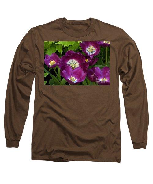 Triumph Tulips Negrita Variety Long Sleeve T-Shirt by Byron Varvarigos