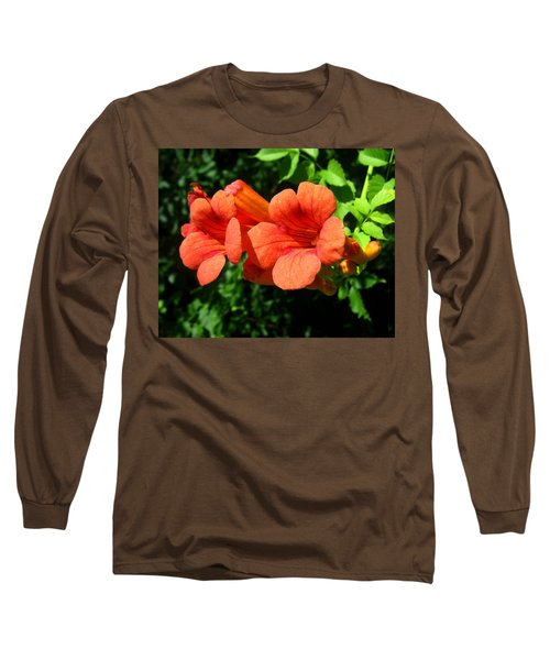Wild Trumpet Vine Long Sleeve T-Shirt