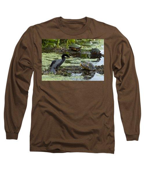 Turtles And Anhinga Long Sleeve T-Shirt by Mark Newman