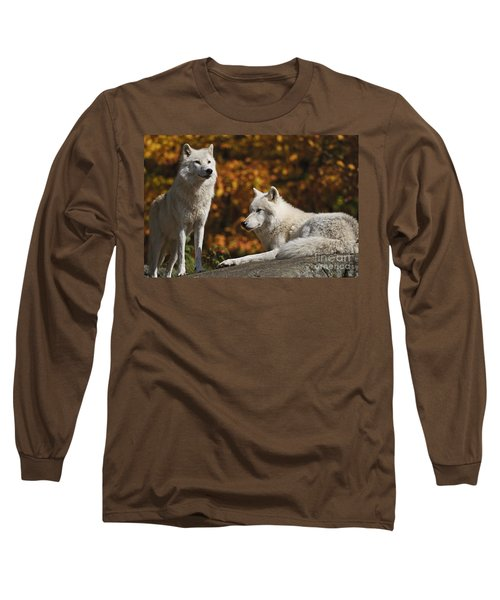 Long Sleeve T-Shirt featuring the photograph Two Arctic Wolves On Rock Hill by Wolves Only