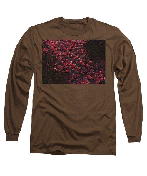 Waterlilies 2 Long Sleeve T-Shirt