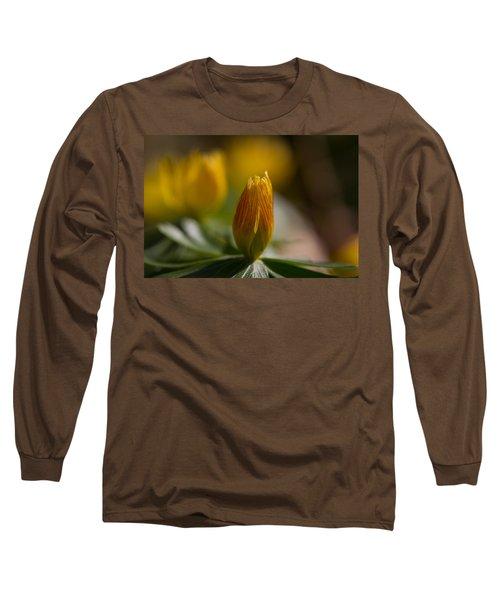 Winter Aconite Long Sleeve T-Shirt