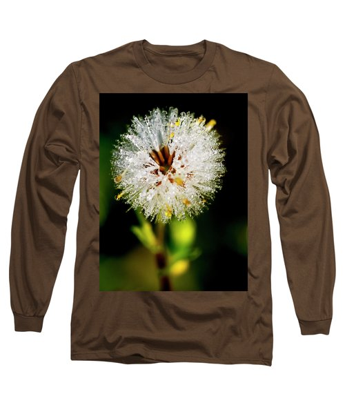 Long Sleeve T-Shirt featuring the photograph Winter Dandelion by Pedro Cardona