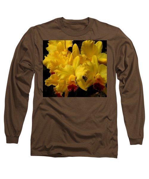 Yellow Folds Long Sleeve T-Shirt
