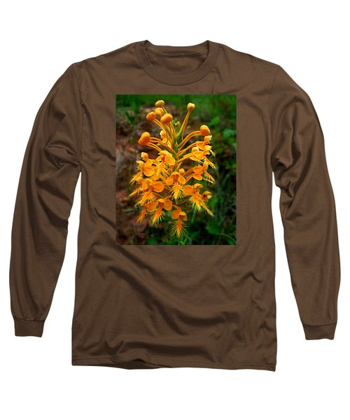 Wild Yellow Fringed Orchid Long Sleeve T-Shirt by William Tanneberger