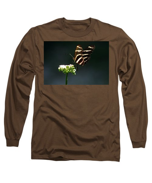 Zebra Longwing Long Sleeve T-Shirt by Greg Allore