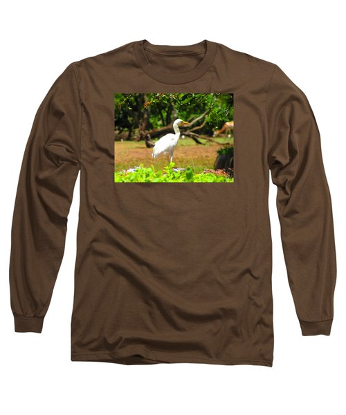 Zoo Long Sleeve T-Shirt by Oleg Zavarzin