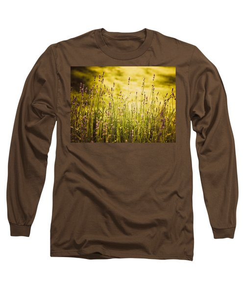 Lavender Gold Long Sleeve T-Shirt by Sara Frank