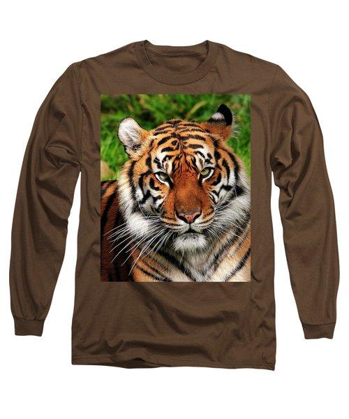 Sumatran Tiger Portrait Long Sleeve T-Shirt