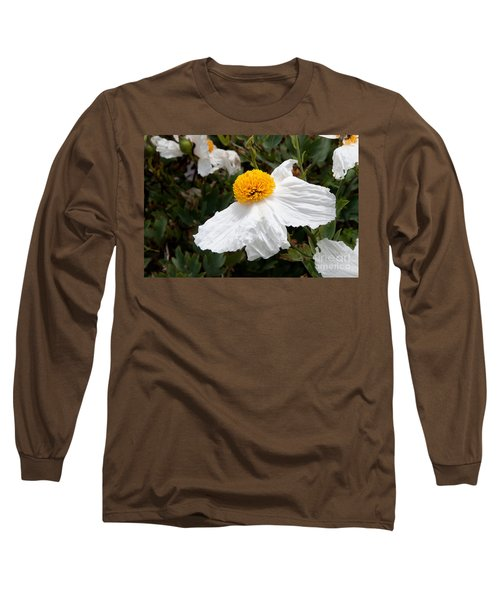 Along Big Sur Long Sleeve T-Shirt