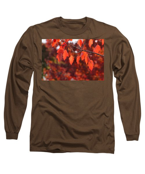 Autumn Leaves In Medford Long Sleeve T-Shirt by Mick Anderson