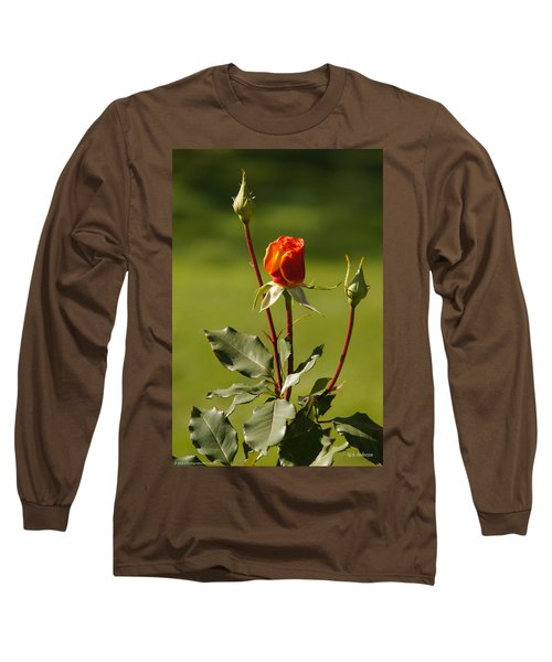 Autumn Rose Long Sleeve T-Shirt by Mick Anderson
