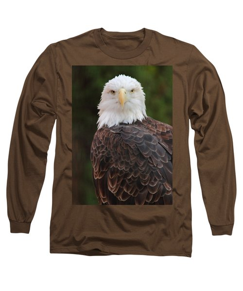 Bald Eagle Long Sleeve T-Shirt by Coby Cooper