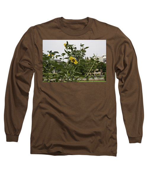 Long Sleeve T-Shirt featuring the photograph Beautiful Yellow Flower In A Garden by Ashish Agarwal