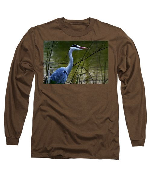 Blue Heron Vondelpark Amsterdam Long Sleeve T-Shirt