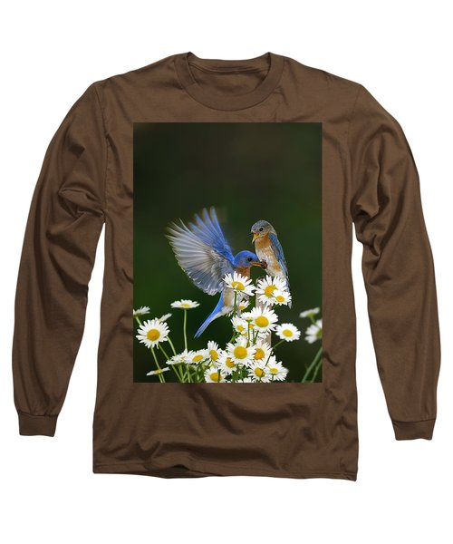 Long Sleeve T-Shirt featuring the photograph Bluebirds Picnicking In The Daisies by Randall Branham
