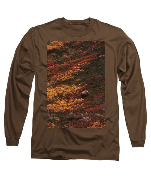 Brown Bear Denali National Park Long Sleeve T-Shirt