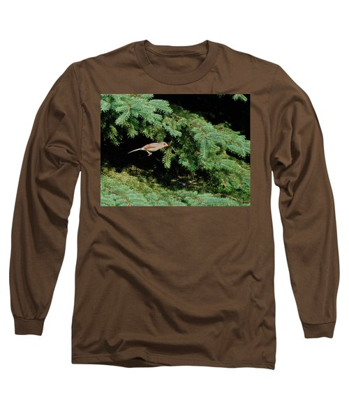 Long Sleeve T-Shirt featuring the photograph Cardinal Just A Hop Away by Thomas Woolworth